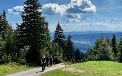 SzczytoFAN-i Nordic Walking
